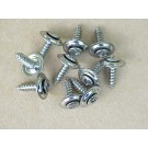 Chrome Finishing Screws for top and headliner